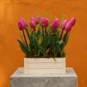 Caja jardin tulipanes
